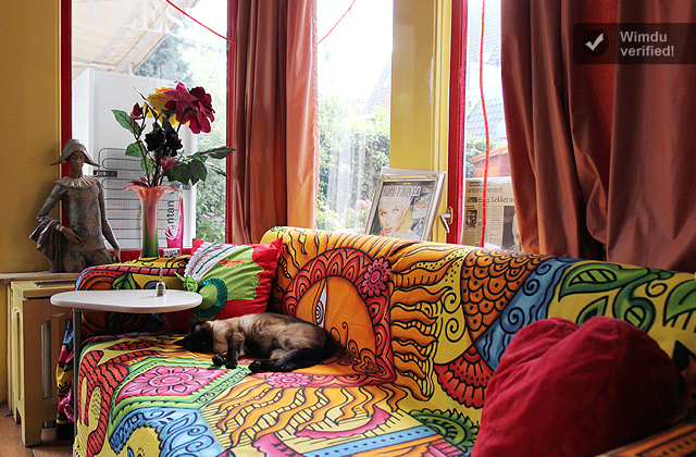 colorful livingroomplus siamese-1